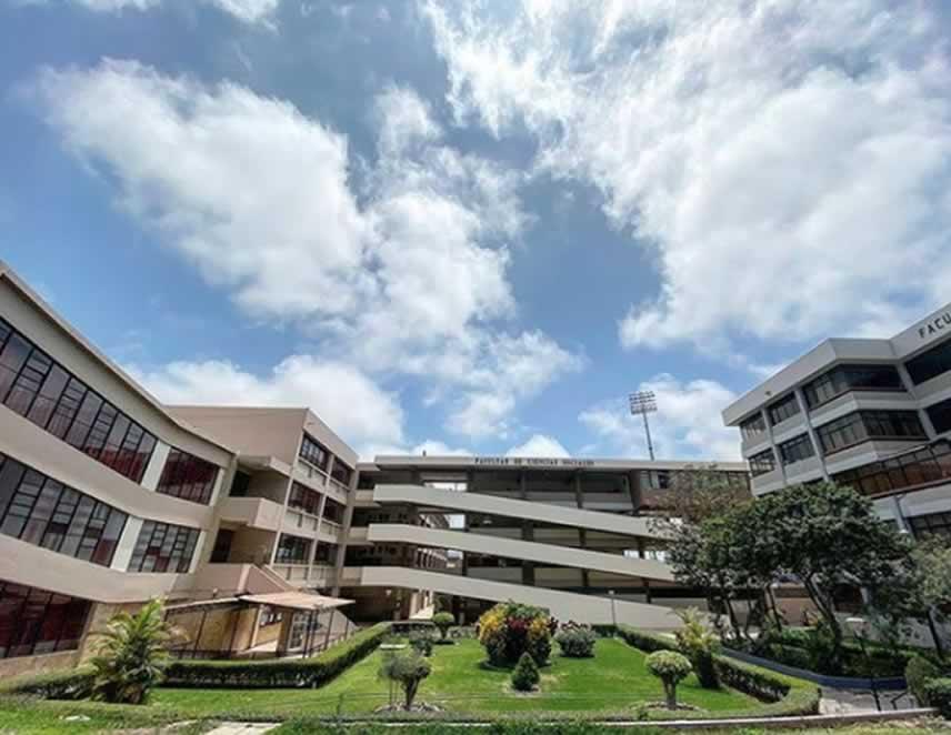 Universidades públicas están prohibidas de exigir a estudiantes documentos, requisitos o información generada por ellas mismas (Foto: UNMSM).