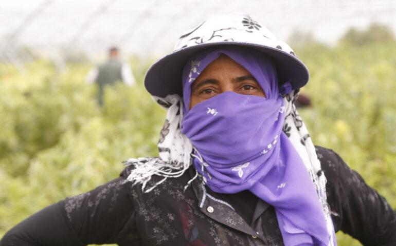 Hombre en plena faena en el Día Mundial de la Seguridad y Salud en el Trabajo;