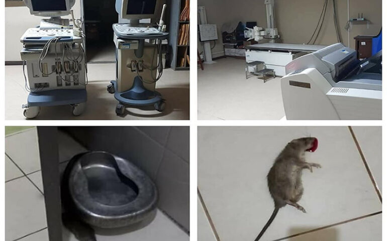 Defensoría del Pueblo interviene para acabar con plaga de ratas en Hospital de Tingo Marìa (Foto: Cuenta Facebook Rafael Baldeón).