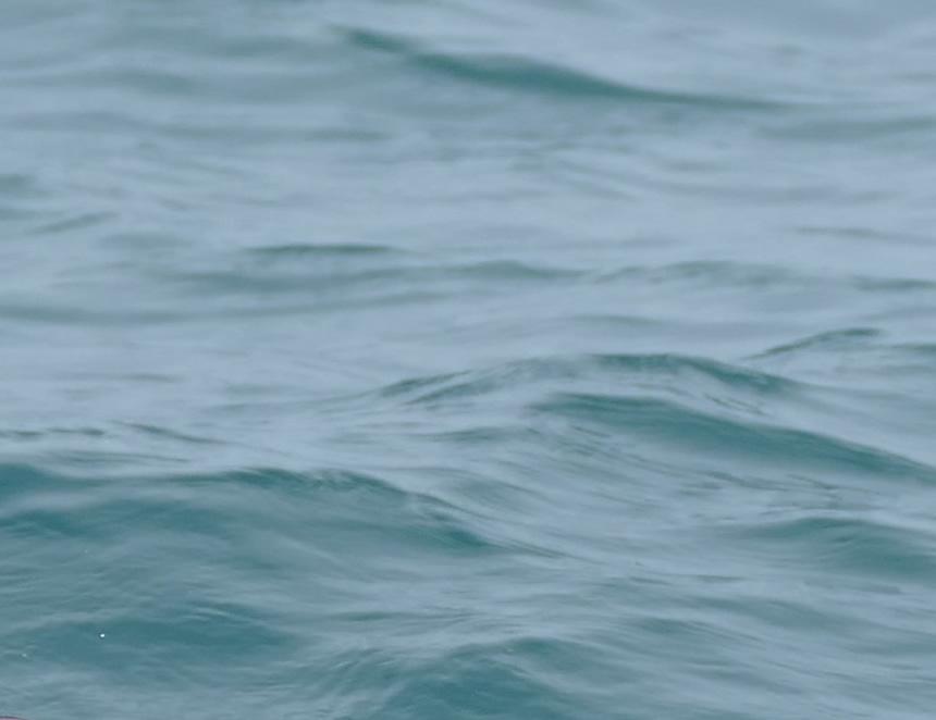 Mar de Grau (Foto: MGP).
