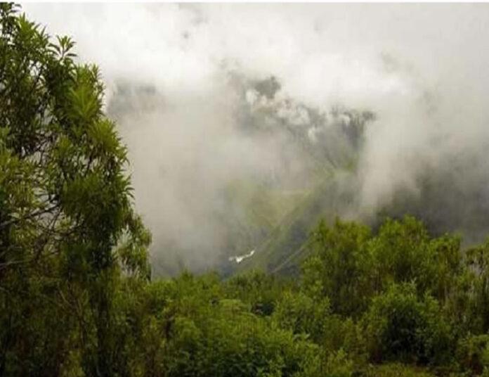 Se avecinan días de lluvia en la selva (Foto: andina).